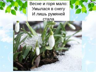 Весне и горя мало: Умылася в снегу И лишь румяней стала Наперекор врагу.
