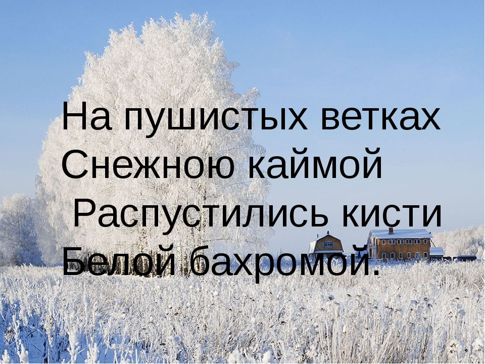 На пушистых ветках Снежною каймой Распустились кисти Белой бахромой.