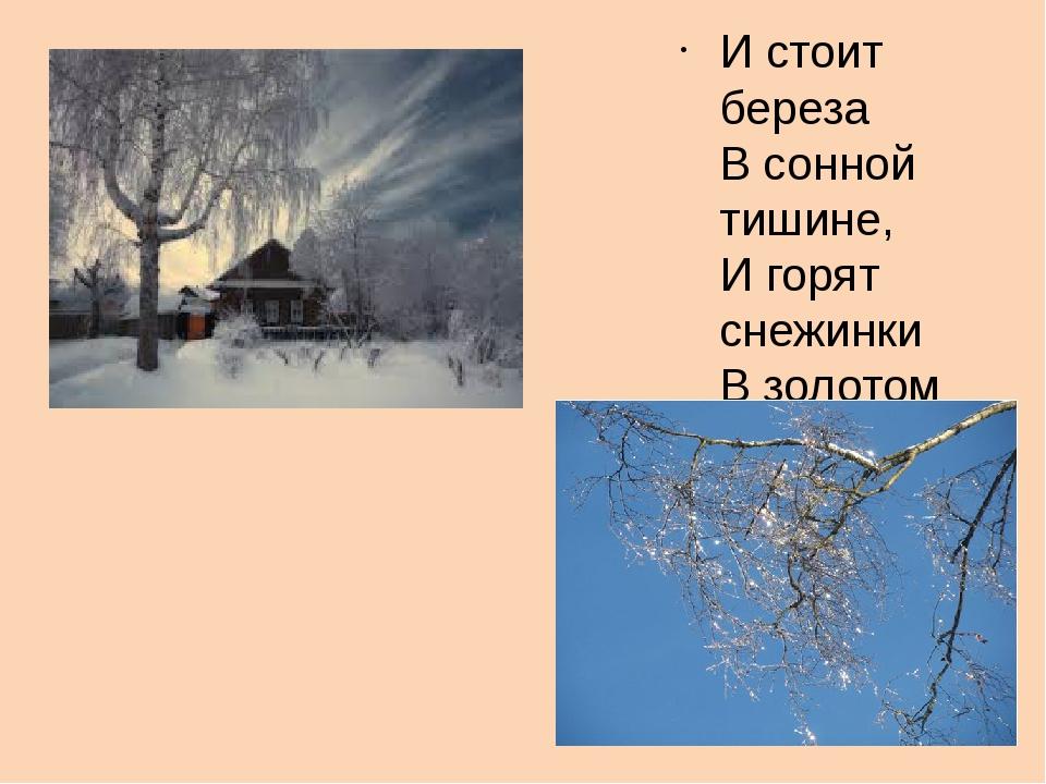 И стоит береза В сонной тишине, И горят снежинки В золотом огне.