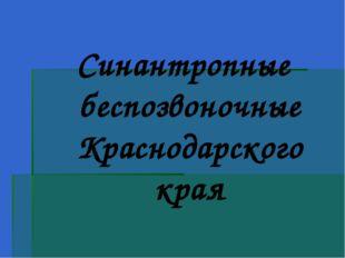 Синантропные беспозвоночные Краснодарского края