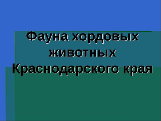 Фауна хордовых животных Краснодарского края