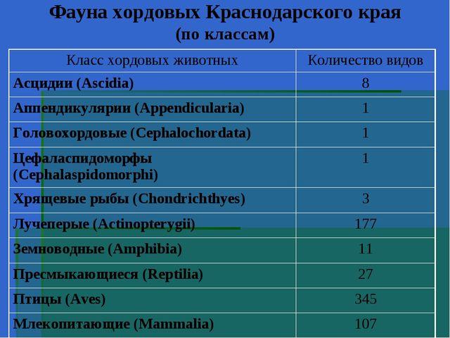 Фауна хордовых Краснодарского края (по классам)
