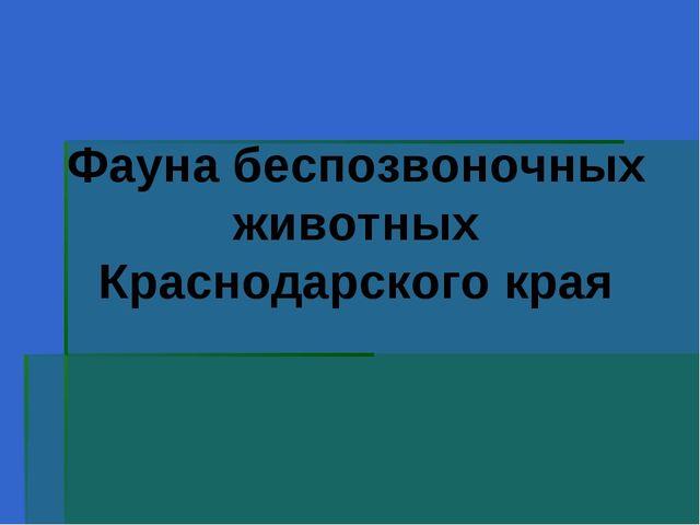 Фауна беспозвоночных животных Краснодарского края
