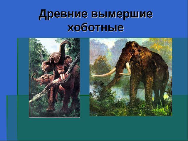 Древние вымершие хоботные