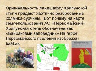 Оригинальность ландшафту Хрипунской степи придают хаотично разбросанные холм