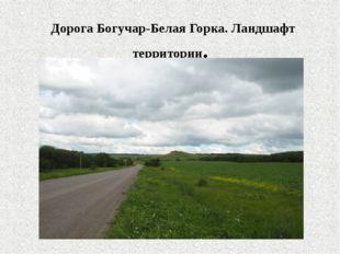 Дорога Богучар-Белая Горка. Ландшафт территории.