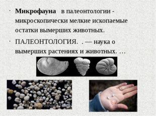 Микрофауна в палеонтологии - микроскопически мелкие ископаемые остатки вымер