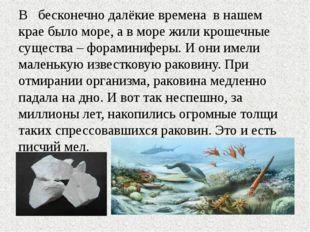 В бесконечно далёкие времена в нашем крае было море, а в море жили крошечные