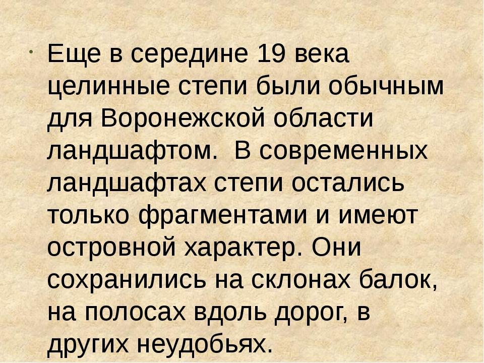 Еще в середине 19 века целинные степи были обычным для Воронежской области л...
