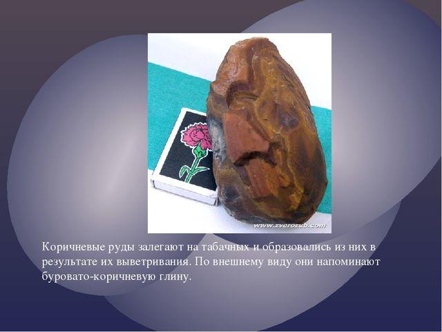Коричневые руды залегают на табачных и образовались из них в результате их вы...