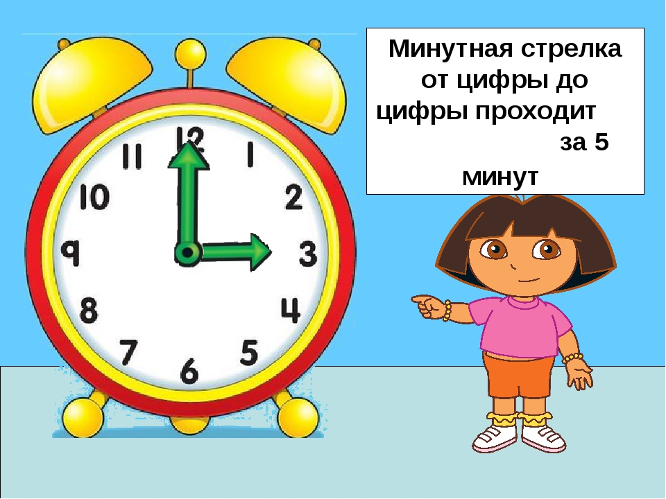 Минутная стрелка от цифры до цифры проходит за 5 минут