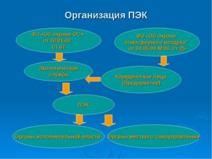 Организация ПЭК ФЗ «Об охране ОС» от 10.01.02 Ст.67 ФЗ «Об охране атмосферног