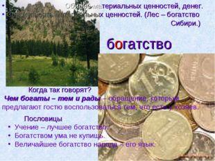 богатство Обилие материальных ценностей, денег. Совокупность материальных цен