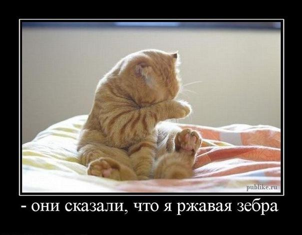hello_html_78f5730d.jpg