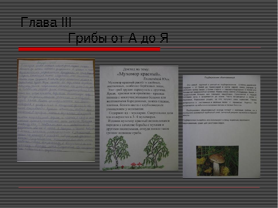 Глава III Грибы от А до Я