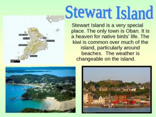Stewart Island is a very special place. The only town is Oban. It is a heaven