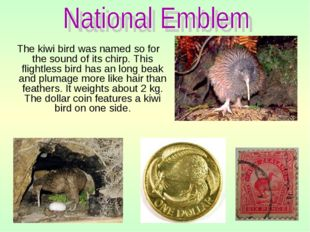 The kiwi bird was named so for the sound of its chirp. This flightless bird