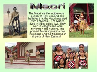The Maori are the indigenous people of New Zealand. It is believed that the