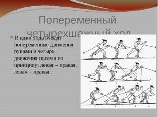 Попеременный четырехшажный ход В цикл хода входят попеременные движения рукам