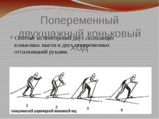 Попеременный двухшажный коньковый ход Состоит из повторений двух скользящих к