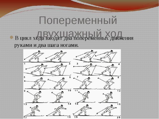 Попеременный двухшажный ход В цикл хода входят два попеременных движения рука...