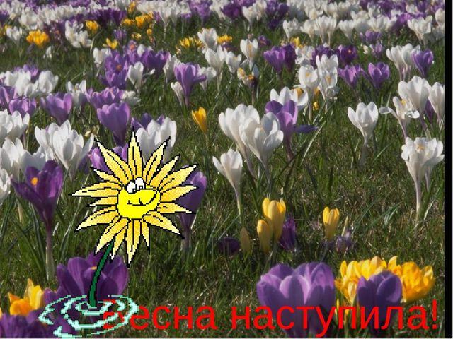Весна наступила!