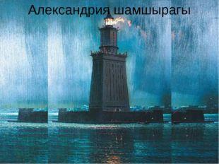 Александрия шамшырагы Александрия шамшырагы