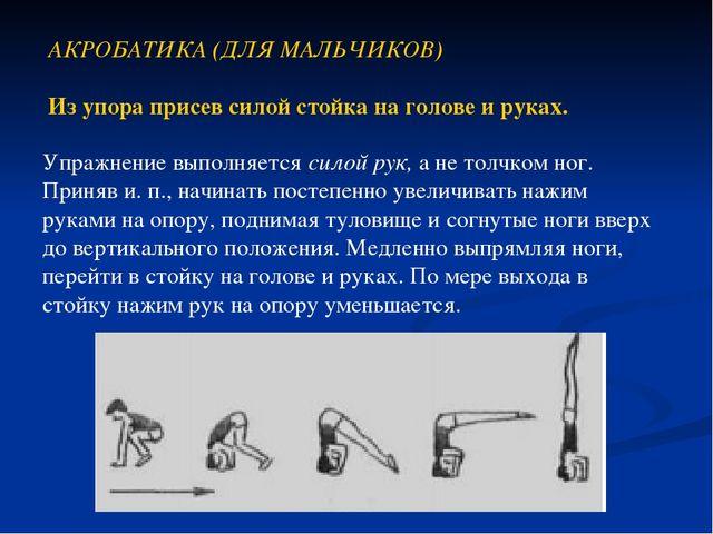 АКРОБАТИКА (ДЛЯ МАЛЬЧИКОВ) Из упора присев силой стойка на голове и руках. Уп...