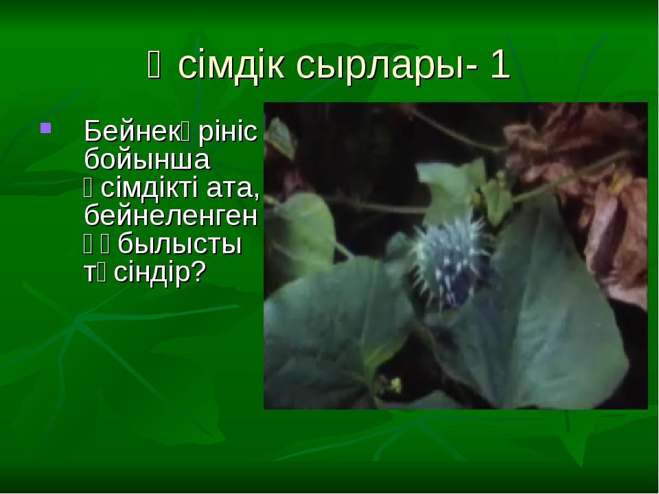 Өсімдік сырлары- 1 Бейнекөрініс бойынша өсімдікті ата, бейнеленген құбылысты...