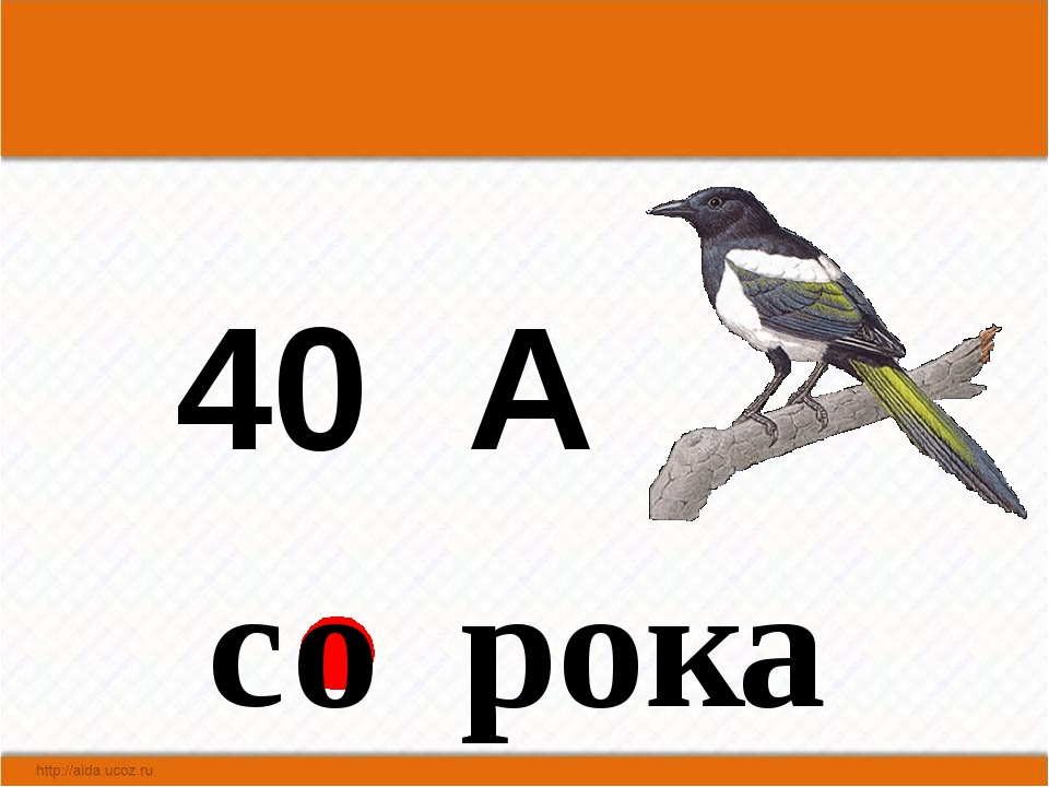 40 А с рока  о