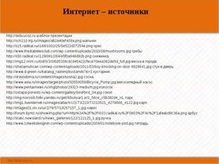 Интернет – источники http://aida.ucoz.ru шаблон презентации http://sch110.trg
