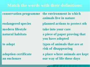 Match the words with their definitions: conservationprogramme the environment