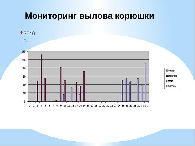 Мониторинг вылова корюшки 2016 г.