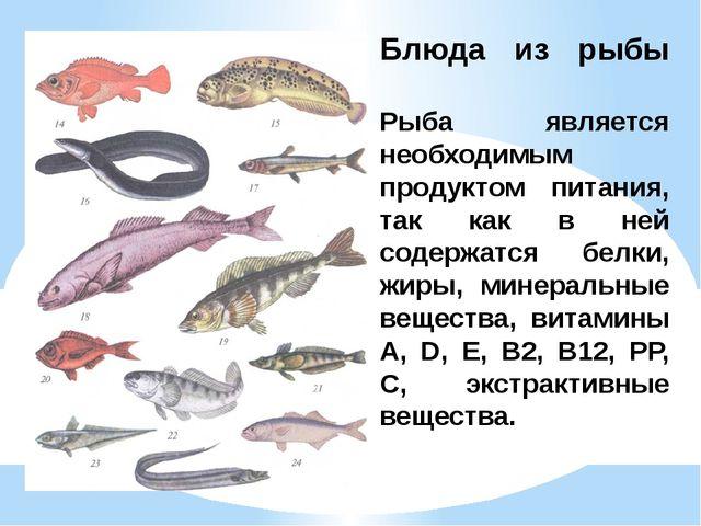 Блюда из рыбы Рыба является необходимым продуктом питания, так как в ней соде...