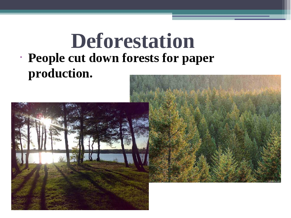 Deforestation People cut down forests for paper production.