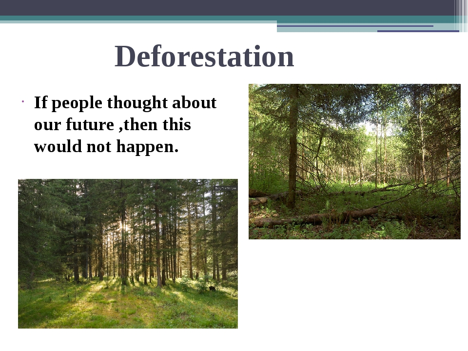Deforestation If people thought about our future ,then this would not happen.