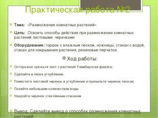 Практическая работа №2 Тема: «Размножение комнатных растений» Цель: Освоить
