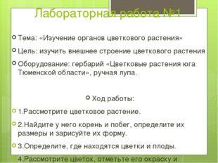 Лабораторная работа №1 Тема: «Изучение органов цветкового растения» Цель: изу