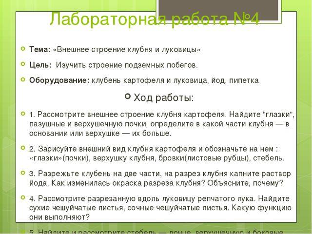 Лабораторная работа №4 Тема: «Внешнее строение клубня и луковицы» Цель: Изуч...