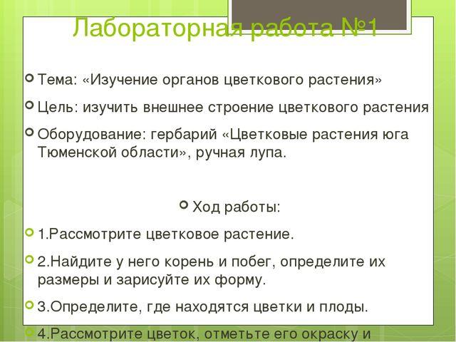 Лабораторная работа №1 Тема: «Изучение органов цветкового растения» Цель: изу...