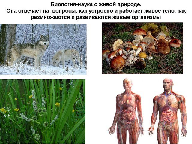 Биология-наука о живой природе. Она отвечает на вопросы, как устроено и работ...