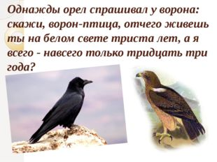 Однажды орел спрашивал у ворона: скажи, ворон-птица, отчего живешь ты на бело