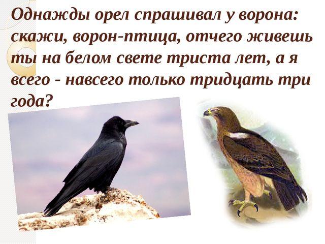 Однажды орел спрашивал у ворона: скажи, ворон-птица, отчего живешь ты на бело...