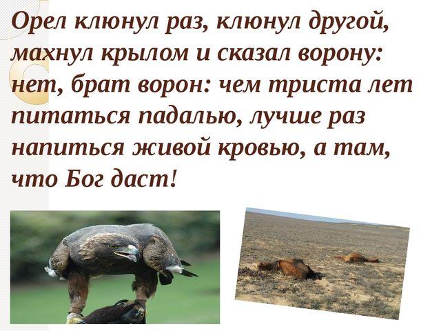 Орел клюнул раз, клюнул другой, махнул крылом и сказал ворону: нет, брат воро...
