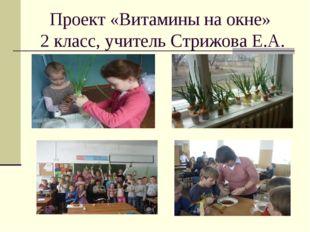Проект «Витамины на окне» 2 класс, учитель Стрижова Е.А.