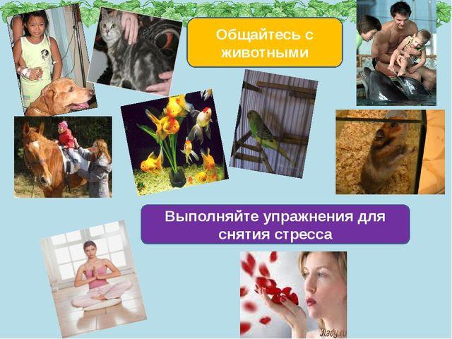 Общайтесь с животными Выполняйте упражнения для снятия стресса