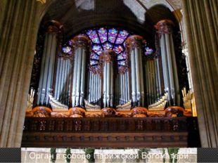Собор парижской богоматери Орган в соборе Парижской Богоматери
