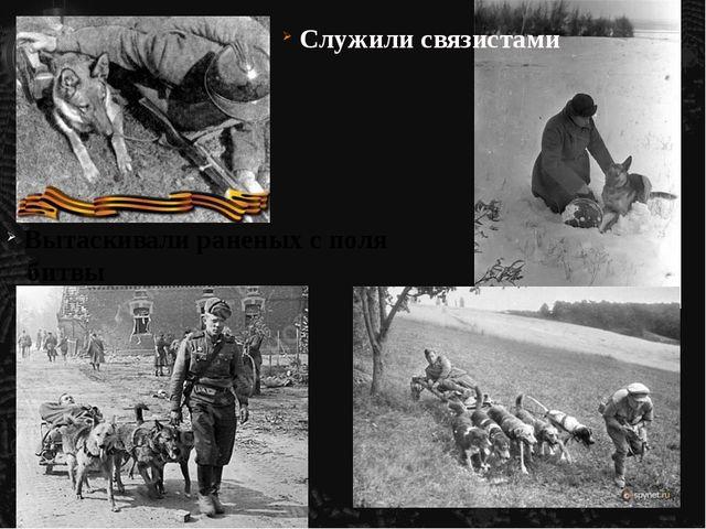 Служили связистами Вытаскивали раненых с поля битвы