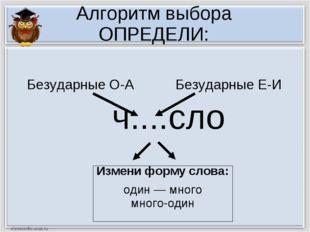 Алгоритм выбора ОПРЕДЕЛИ: ч....сло Измени форму слова: один — много много-оди