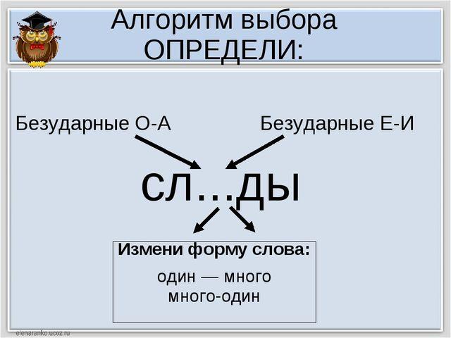 Алгоритм выбора ОПРЕДЕЛИ: сл...ды Измени форму слова: один — много много-один...